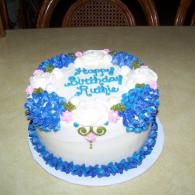 Birthday Cake Gallery by Cake Art Creations By Jane in